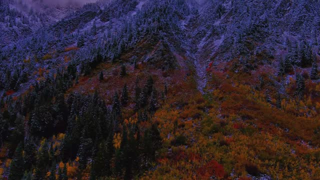 drone captured the spectacular palette of fall colors in the landscape around the snowbird ski resort near salt lake city, utah, on october 10. the... - https stock-videos und b-roll-filmmaterial