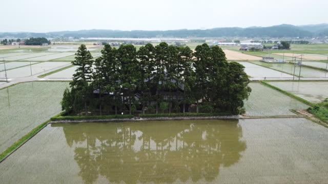 drone: dispersed settlement in toyama, japan - ファームハウス点の映像素材/bロール