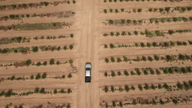 drone, farm factory agriculture, desert, truck, tunis, tunisia - tunisia video stock e b–roll