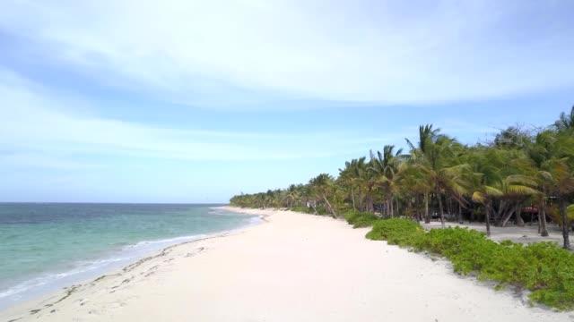 A drone flies along a quiet private beach next to palm trees in Camp Bay Roatan Honduras