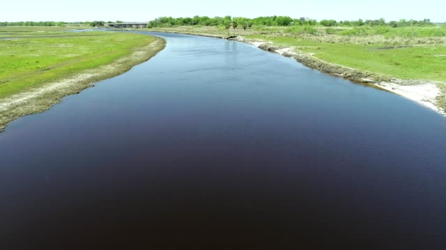 stockvideo's en b-roll-footage met a drone flies alongside birds over a river through the grasslands of cocoa florida - gulf coast states