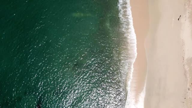 a drone flies birdseye over desaru beach coast in kota tinggi johor malaysia - johor stock videos & royalty-free footage