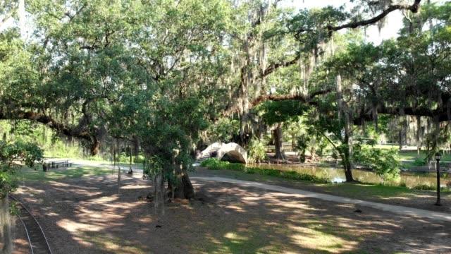 vidéos et rushes de a drone flies into a tree by a bayou footbridge in new orleans louisiana - marécage