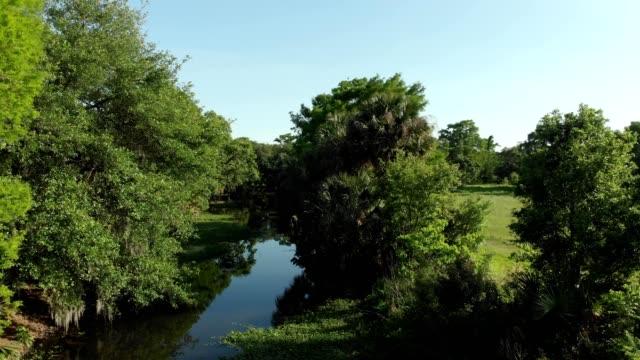 vidéos et rushes de a drone flies over a bayou stream in new orleans louisiana - marécage