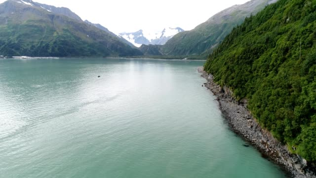 a drone flies over a coast in prince william sound whittier alaska - prince william stock videos & royalty-free footage
