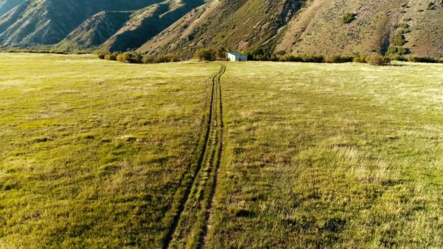 a drone flies over a field in big springs park in provo utah - provo stock videos & royalty-free footage