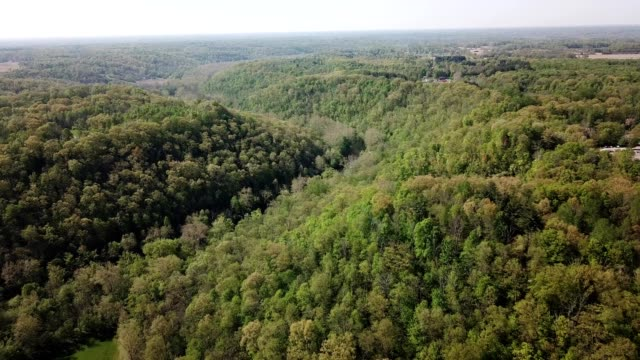 a drone flies over a forest in the gorges of oregonia ohio - ohio stock videos & royalty-free footage