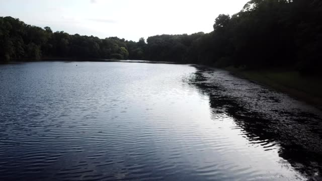 A drone flies over a lake by a forest in Fairfax Virginia