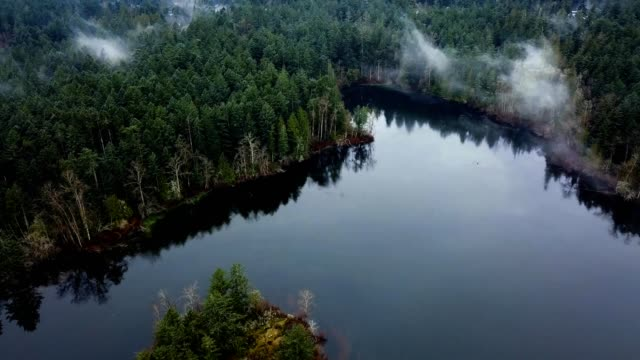 a drone flies over a lake with patches of mist in victoria canada - カナダ ビクトリア市点の映像素材/bロール