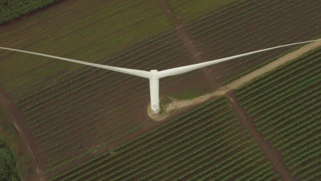 a drone flies over a wind turbine on a crop farm in santa isabel puerto rico - puerto rico stock videos & royalty-free footage