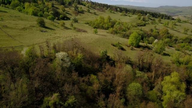 a drone flies over hills in făgăraș brașov county romania - transilvania video stock e b–roll
