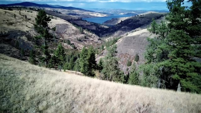 a drone flies over moonshine canyon in view of columbia river in creston washington - dronebase stock videos and b-roll footage