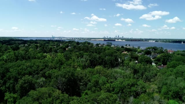 a drone flies over treetops in jacksonville florida - jacksonville florida video stock e b–roll