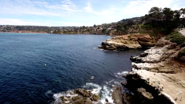 a drone flies past the la jolla coves in san diego calfornia - dronebase stock videos and b-roll footage