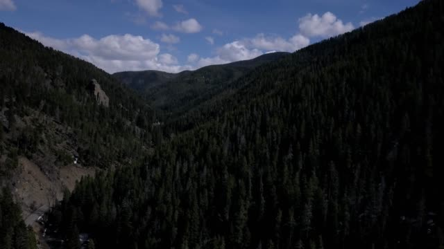 vidéos et rushes de a drone flies through a forested canyon in bozeman montana - bozeman