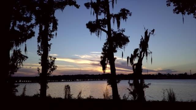 a drone flies through a treeline towards a sunset over julington creek in jacksonville florida - jacksonville florida video stock e b–roll