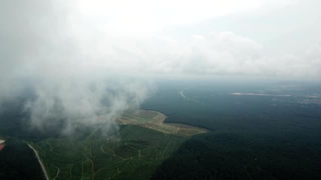 a drone flies through clouds over fields in kulai johor malaysia - johor stock videos & royalty-free footage