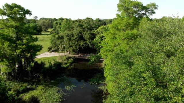 vidéos et rushes de a drone flies towards a footbridge over a city park bayou in new orleans louisiana - marécage