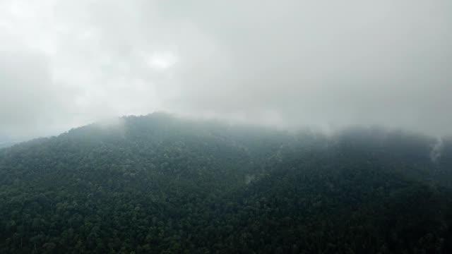 a drone flies towards fog in kulai johor malaysia - johor stock videos & royalty-free footage
