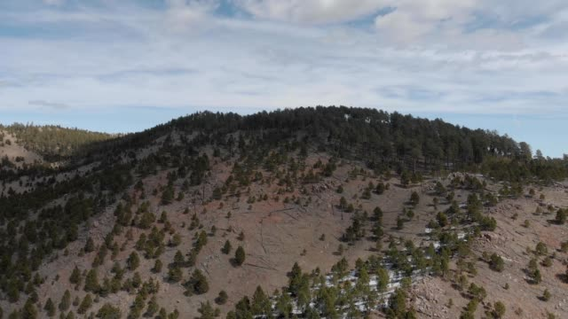 a drone flies towards the top of a hill in custer south dakota - custer staatspark stock-videos und b-roll-filmmaterial