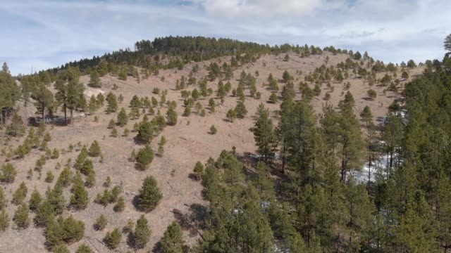 a drone flies up a large hill in custer state park south dakota - カスター州立公園点の映像素材/bロール