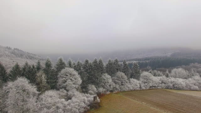 drone flight, aerial view over winter landscape with hoarfrost - rhineland palatinate stock videos & royalty-free footage