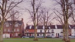 Drone Flight Between Trees in Town Park