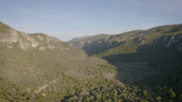 drone flight over a valley covered with trees - valley stock videos & royalty-free footage