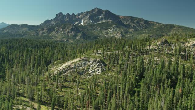 シエラバテス近くのカリフォルニアシエラネバダ上空ドローン飛行 - 国有林点の映像素材/bロール