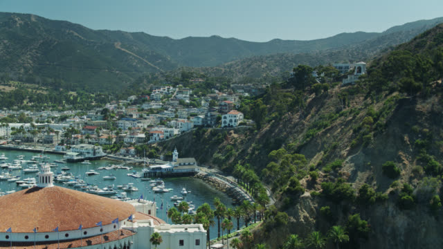 drone flight over catalina casino towards avalon on summer morning - channel islands california stock videos & royalty-free footage