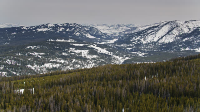 drone flight over forest and mountains in wyoming in winter - grand teton stock videos & royalty-free footage