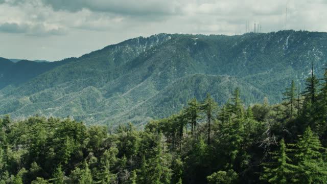 ウィルソン山を明らかにするヒルサイドツリートップスの上のドローン飛行 - エンジェルス国有林点の映像素材/bロール