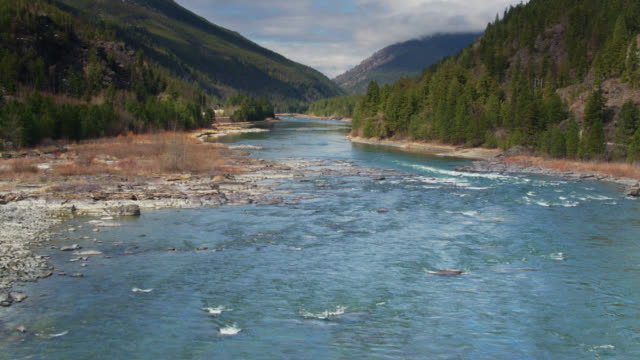 vídeos de stock e filmes b-roll de drone flight over kootenai river in northern montana - montana