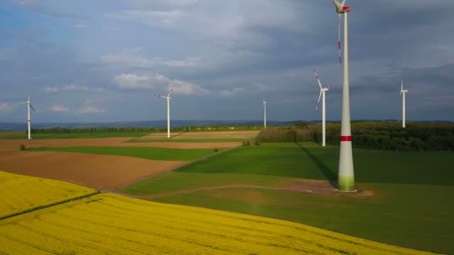 drone flight over rapefield, saargau, rhineland-palatinate, germany - crucifers 個影片檔及 b 捲影像