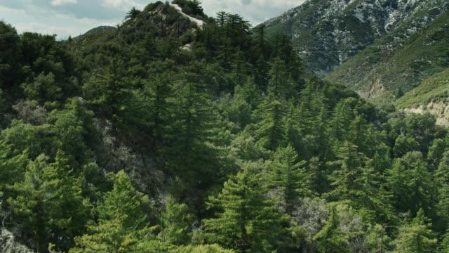 春にサンガブリエル山脈の急な丘の中腹の上にドローン飛行 - エンジェルス国有林点の映像素材/bロール