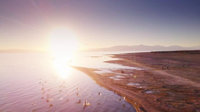 drone flight over the salton sea at sunset - faglia di sant'andrea video stock e b–roll