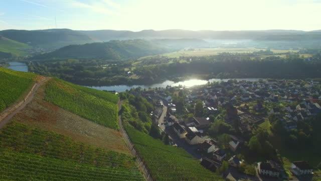 drone flight over vineyards, saarburg, saar valley, district trier-saarburg, rhineland-palatinate, germany - saarburg stock-videos und b-roll-filmmaterial