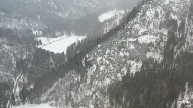 drone flight toward a mountain ridge with forest and snow in the winter - bavarian alps stock videos & royalty-free footage