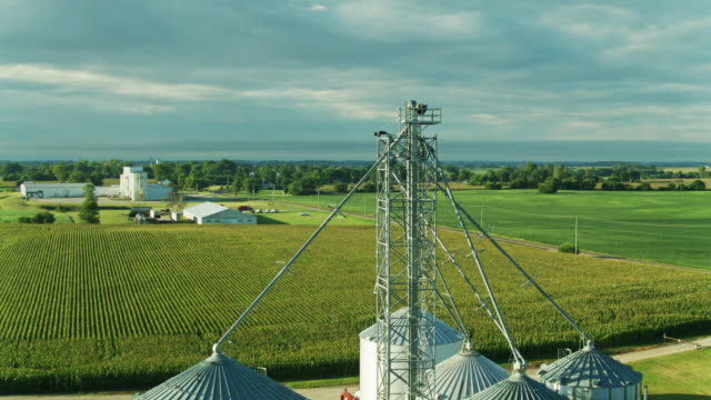 drone flight towards and over grain silo surrounded by cornfields - 30 seconds or greater stock videos & royalty-free footage
