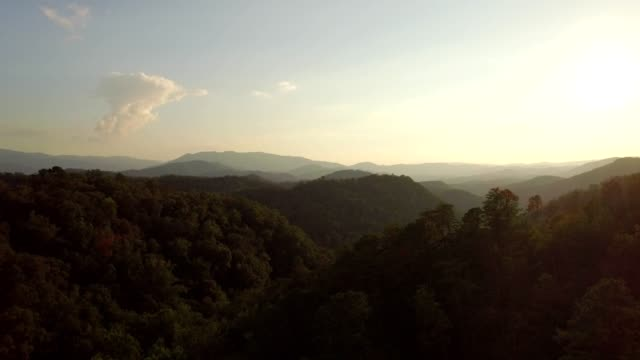 drone - fly through & over mountain trees at dusk - tennessee video stock e b–roll