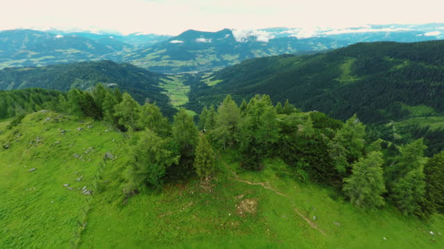 drone flying backwards out of forest revealing beautiful view in the austrian alps - austria stock videos & royalty-free footage