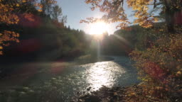 Drone Flying by Fall Leaves in Forest with Golden Sun Flare on River Water