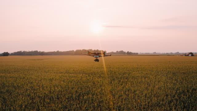 日没時にトウモロコシのフィールドの上を飛ぶ空中ドローン - ファームハウス点の映像素材/bロール