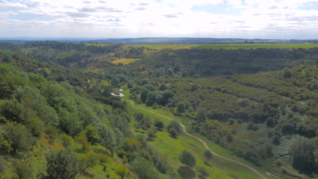 drone flying over a track on the yorkshire moors, uk - heather hunter stock videos & royalty-free footage
