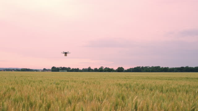 DS Drone flying over fields with a package