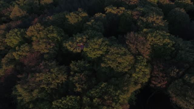 vídeos de stock, filmes e b-roll de dji s1000 drone flying over landscape at sunset - menos de 10 segundos
