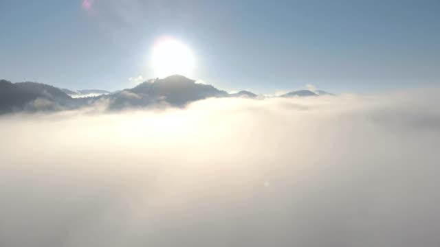 vídeos de stock, filmes e b-roll de avião voando sobre montanhas enevoadas de manhã. - árvore tropical