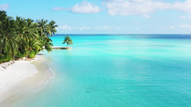 drone flying over tropical beach in maldives - maldives stock videos & royalty-free footage