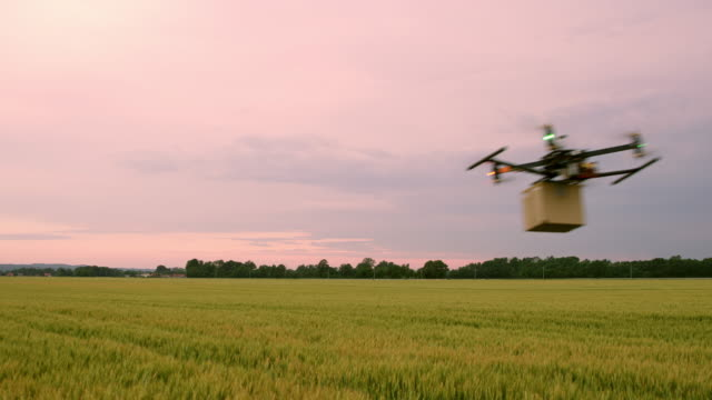 DS Drone flying with a package in the countryside