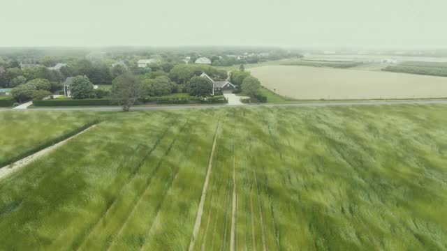drone footage captured the mesmerizing pattern created by ryegrass blowing in the wind in southampton, new york, on may 26. this footage was captured... - psychedelic stock videos & royalty-free footage